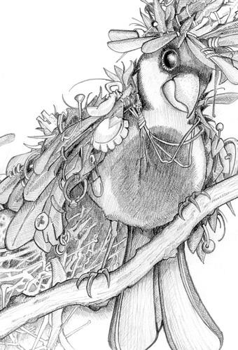 Ein Wald voller wundersamer Fabeltiere – Druckerei MRD