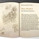 Illustration Fabulous Beast - Messy Finch - MRD Brochure