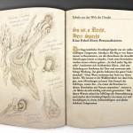 Illustration Fabulous Beast - Woodpecker - MRD Brochure