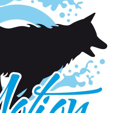 4Motion – Praxis für Tierphysiotherapie